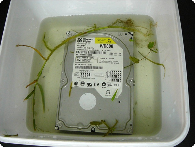 Water damaged hard drive